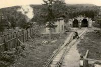 Депо Детской железной дороги. На деповских путях хорощшо видна инспекциолнная мотодрезина. По главному пути (слева) идёт поезд с паровозом 159-238. Южно-Сахалинск