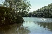 Вид на озеро на турбазе