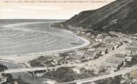 Вид на поселок Тарантомари