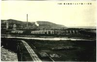 Вид на целлюлозно-бумажную фабрику Одзи в г. Сиритору