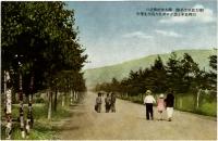 Улица Дзинзя-дори ведущая к храму Карафуто Дзинзя