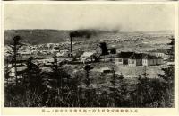 Целлюлозно-бумажная фабрика в г. Одомари