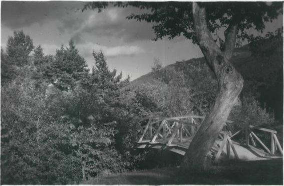 Южно-Сахалинск. Городской парк КиО Горбатый мост.