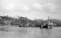 Бухта Крабовая. Сайровая экспедиция, осень 1975 года