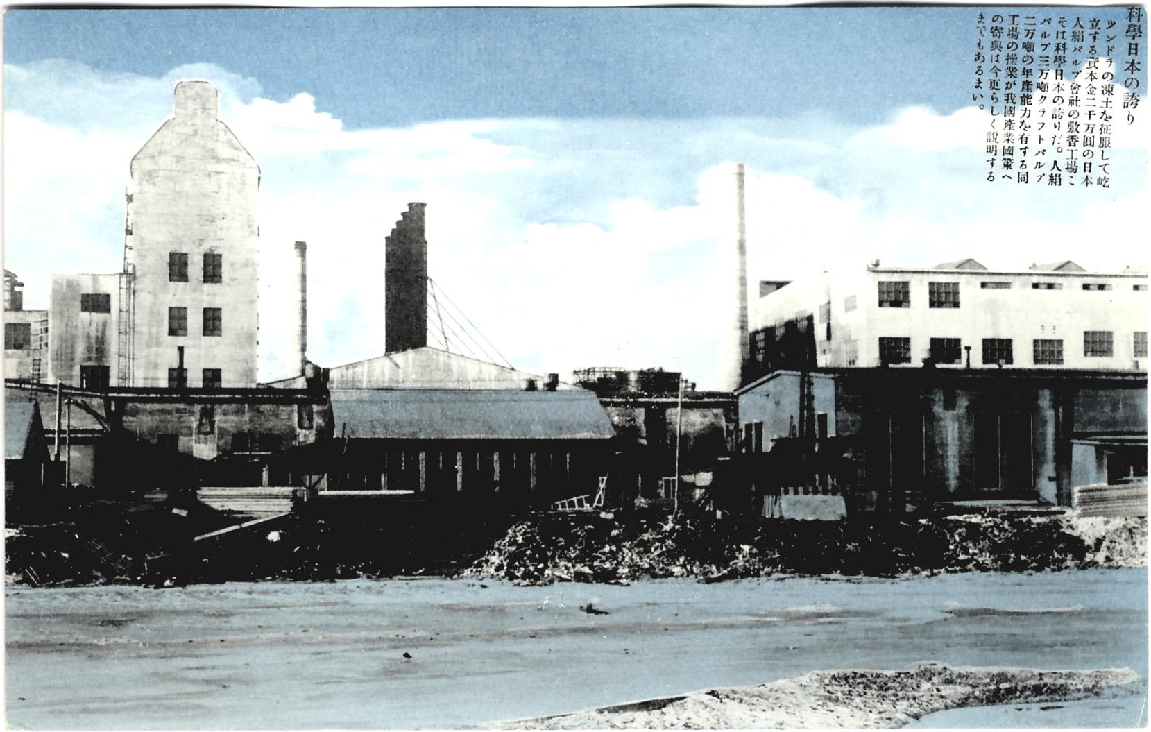 Целлюлозно-бумажный завод в Сикука