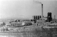 Вид на целлюлозный завод в Отиай.