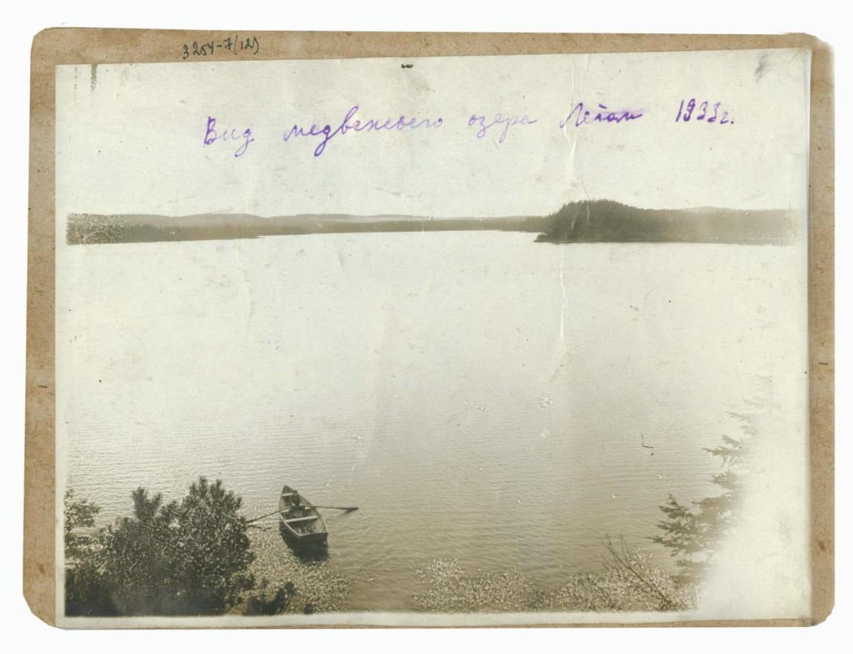 Вид на Медвежье озеро с возвышенности. Лето.