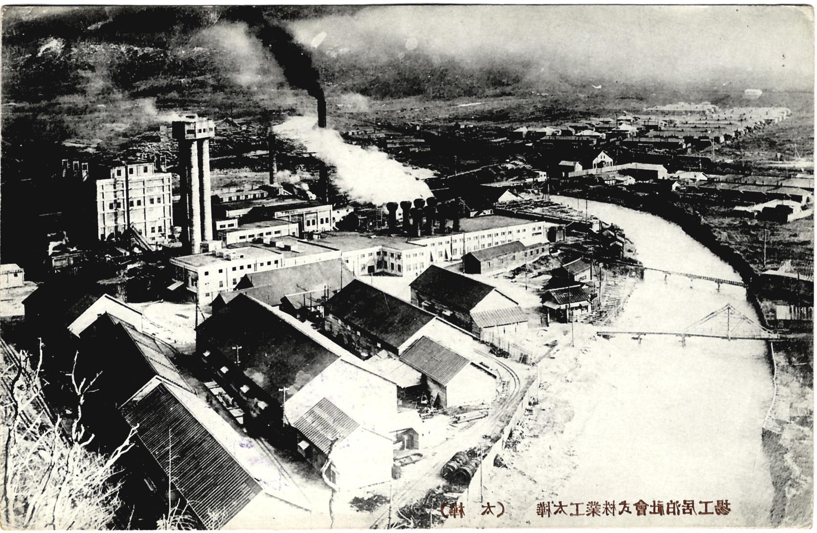 Вид на целлюлозный завод в Томари.