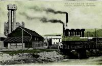 Целлюлозно-бумажный завод в Томариору