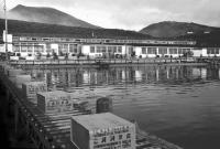 Рыбокомбинат 'Островной' на острове Шикотан