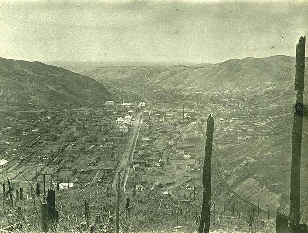 Вид на поселок Тельновский.