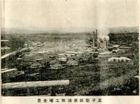 Вид на целлюлозную фабрику в Эсутору
