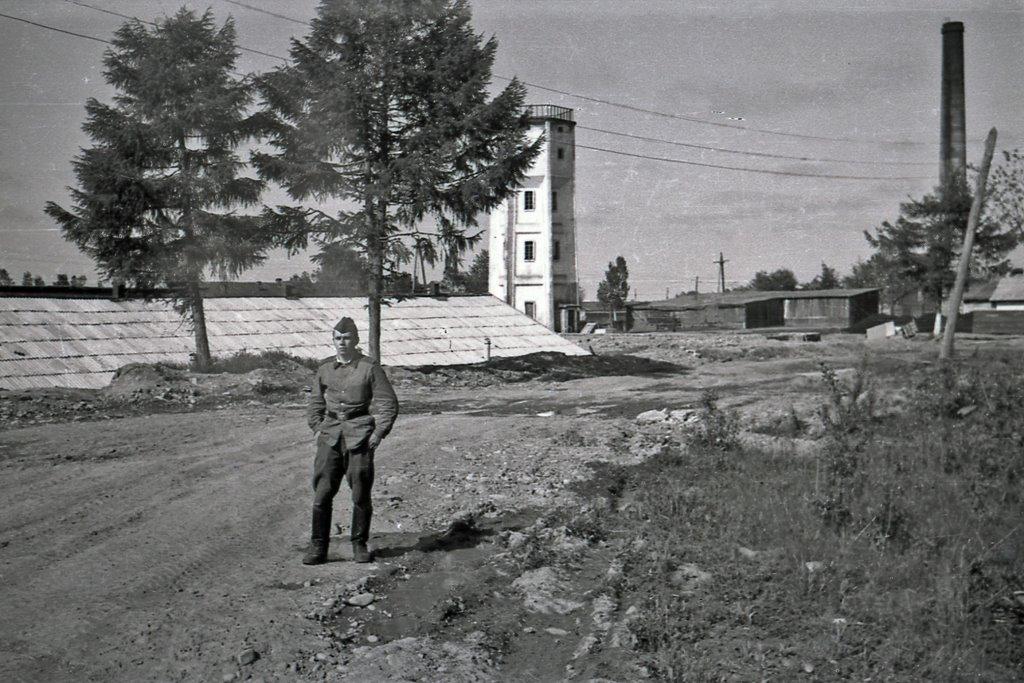 Яхробол ярославская область фото