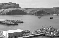 Сайровый флот рыбокомбината 'Островной' в порту Малокурильское