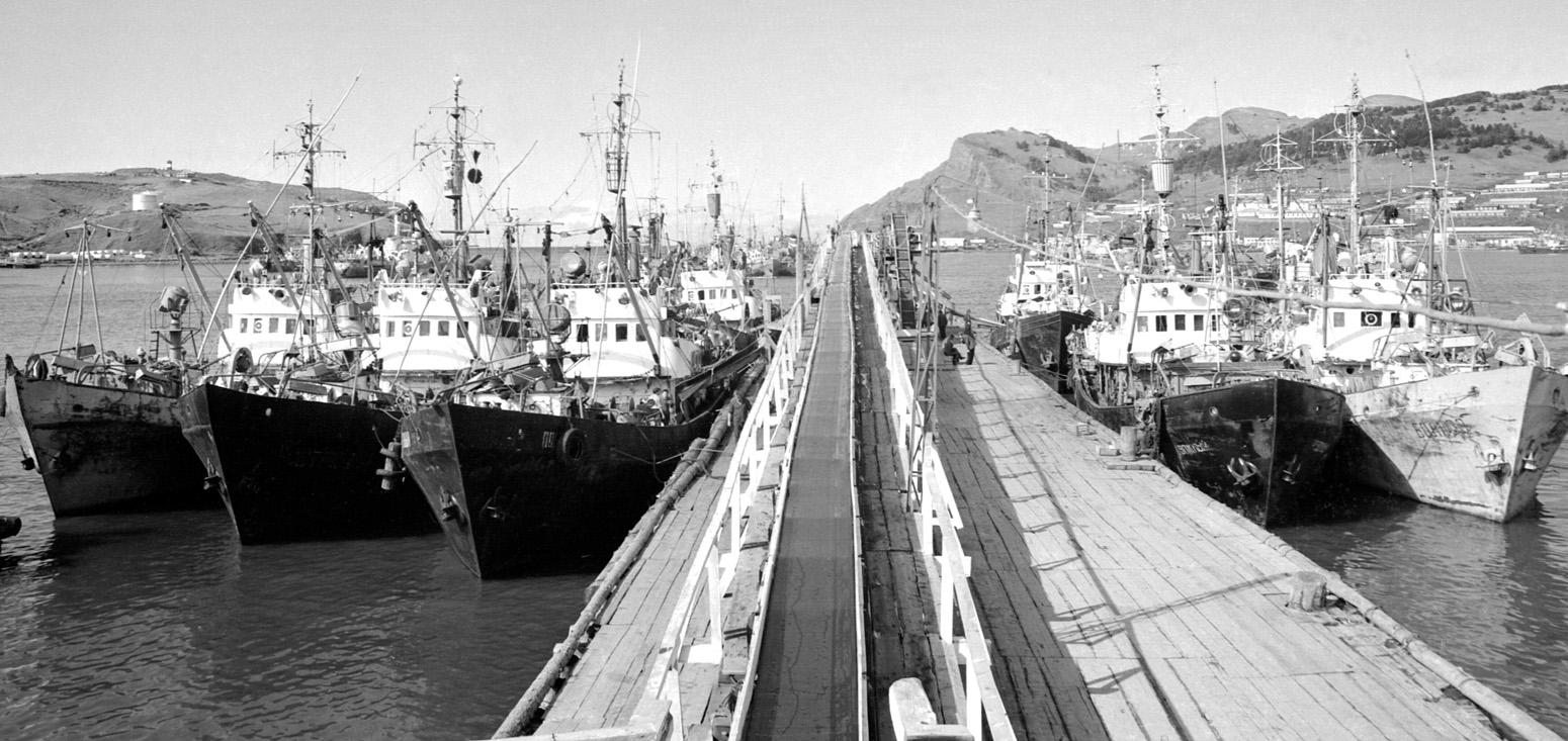 Конвейер рыбокомбината 'Островной' в порту Малокурильское.