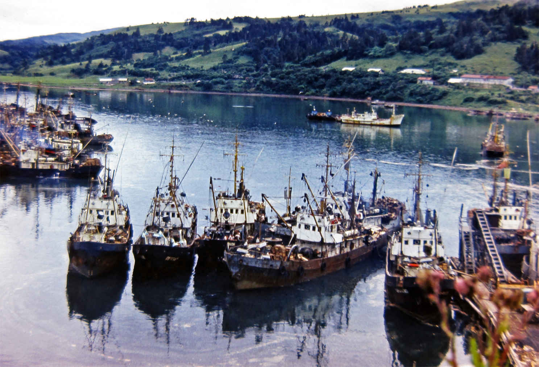 Сайровый флот рыбокомбината 'Островной' в порту Крабозаводское