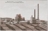 Целлюлозная фабрика в Одомари