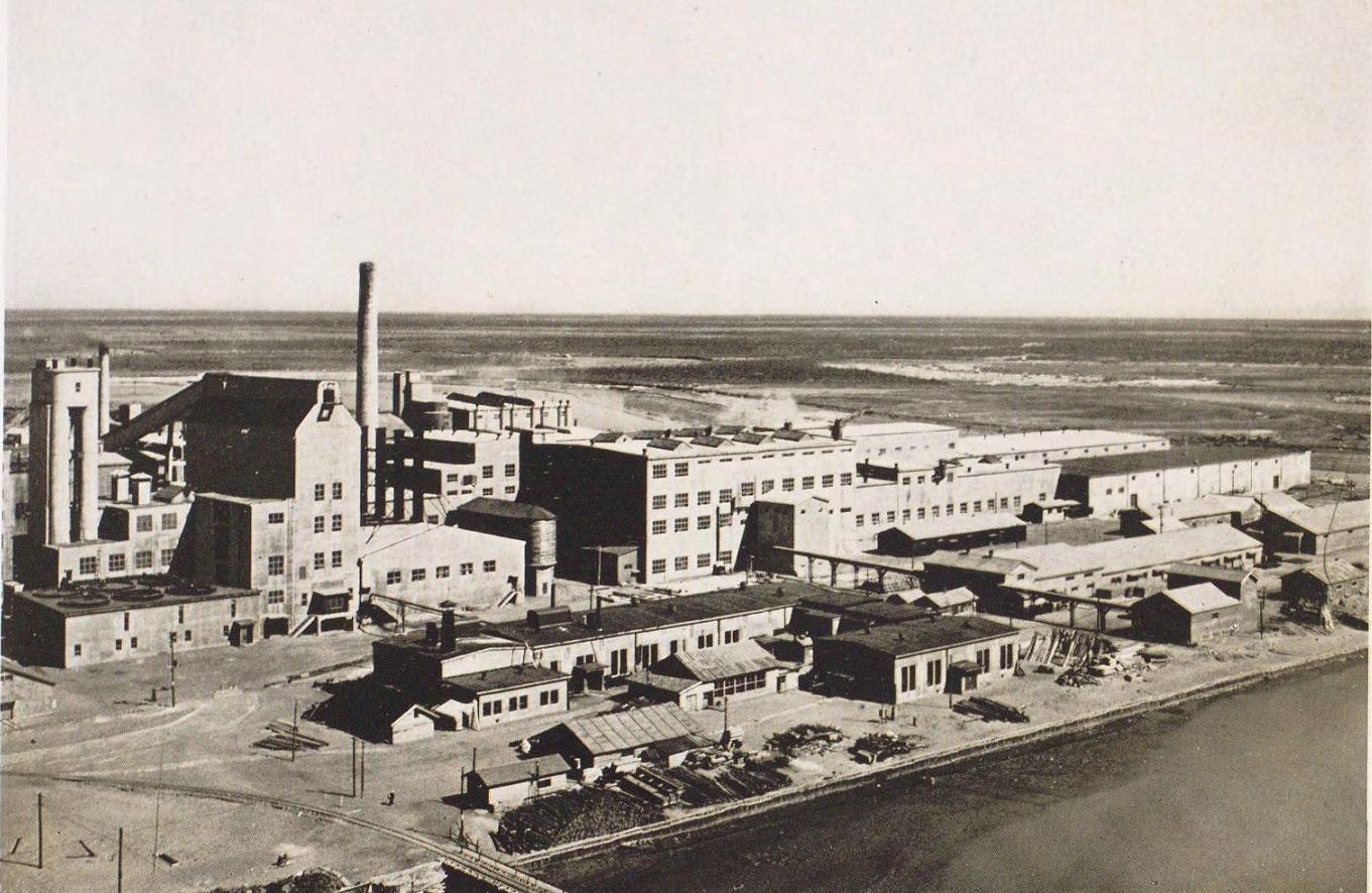 Бумажная фабрика в городе Сикука