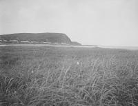 Вид на посёлок Тоннай-мисаки