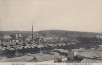 Вид на целлюлозно-бумажный завод в Одомари