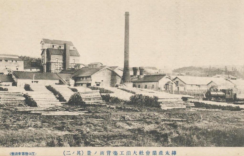 Целлюлозно-бумажный завод в Одомари
