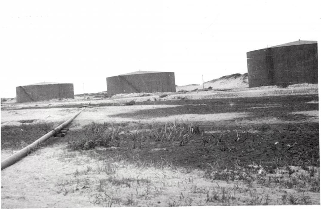 Фотография видовая. На заднем плане три нефтяных резервуара в Москальво
