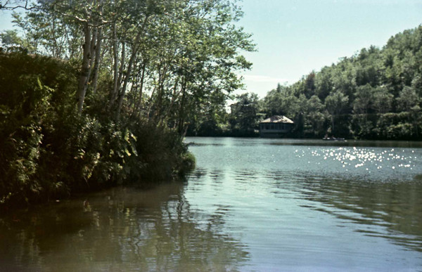 Вид на озеро на турбазе 'Озеро Верхнее' г. Чехов