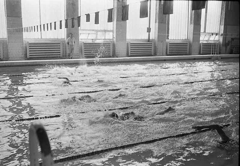 На соревнованиях в бассейне Дворца спорта. г. Южно-Сахалинск