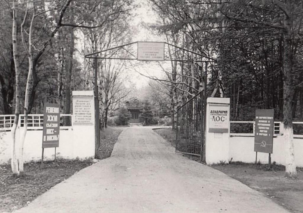 Вход в дендрарий Сахалинской ЛОС г. Долинск