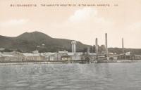 Вид с моря на целлюлозно-бумажную фабрику г. Маока