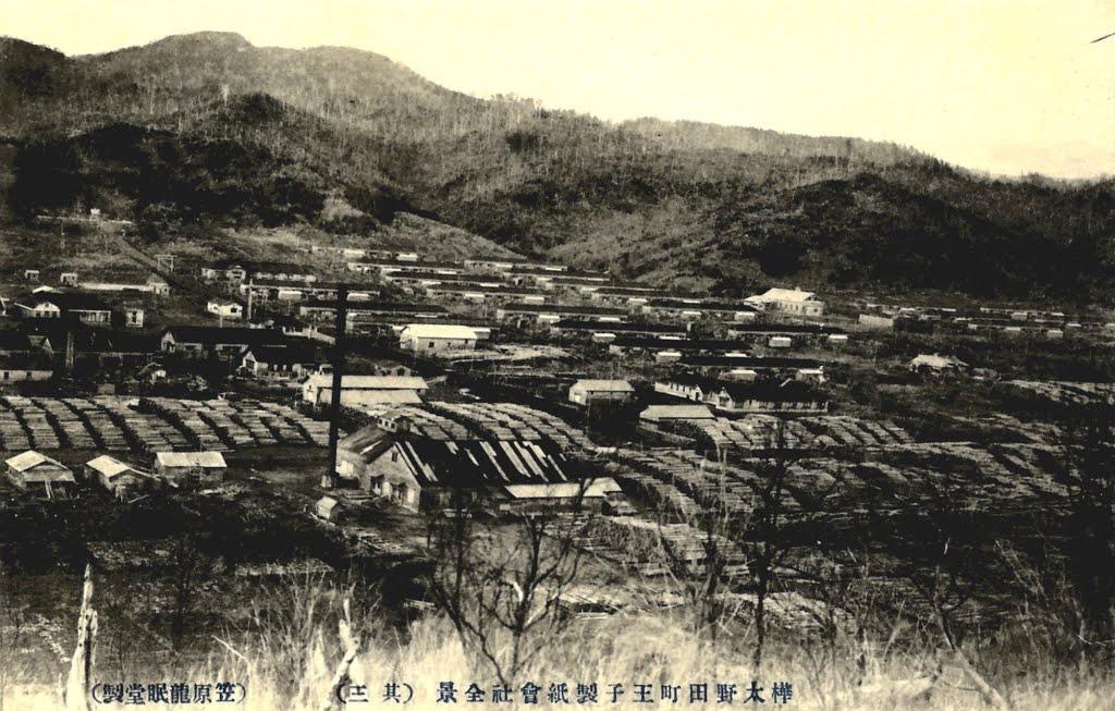 Вид на целлюлозно-бумажную фабрику г. Нода. 3 из 3.