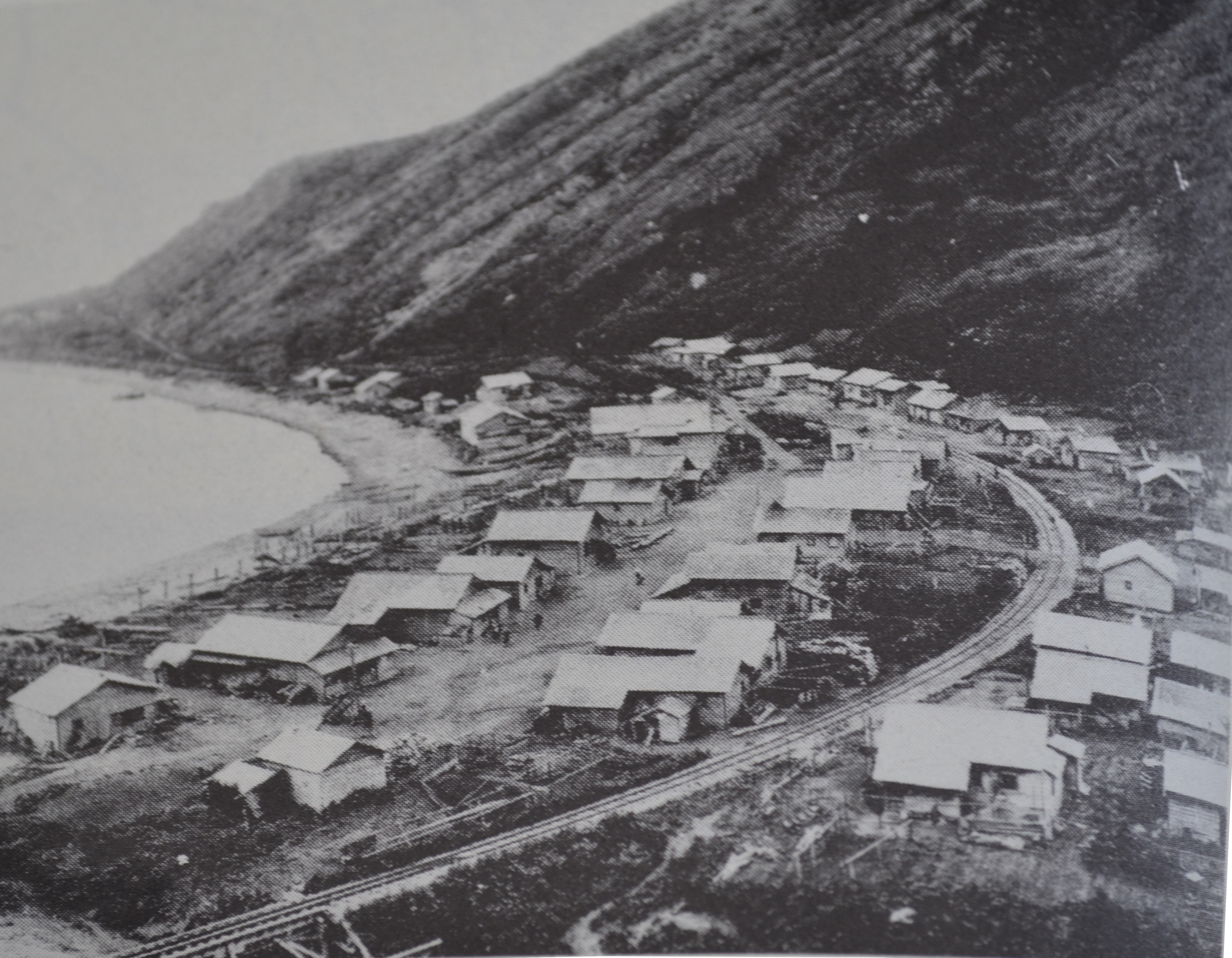 Поселок Тарантомари (Калинино)