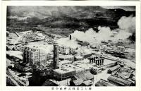 Панорамный вид на целлюлозно-бумажный завод в г. Томариору