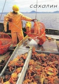 Рыбаки Невельской базы тралового флота на добыче краба
