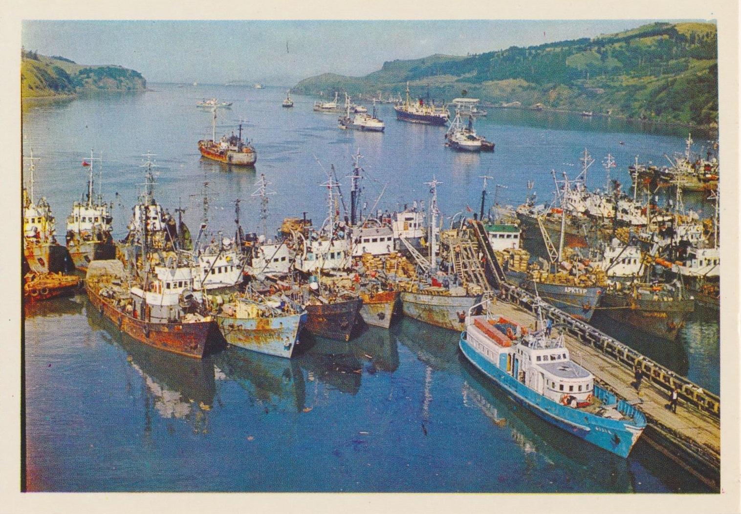 Рыболовецкая флотилия у острова Шикотан.