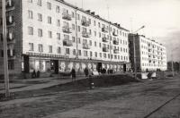 Магазин Сельхозпродукты на первом этаже жилого дома в г. Долинск