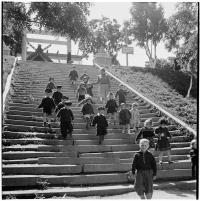 Серия снимков. Дети на лестнице бывшего храма Маока дзинзя в Холмске