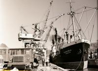 Грузовой пароход «Бобруйск» доставил с материка трелевочные тракторы. г. Холмск