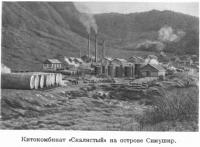 Китокомбинат 'Скалистый' на острове Симушир