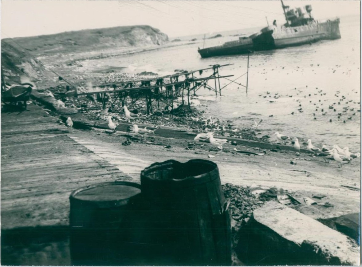 Последствия Северо-Курильского цунами. Китокомбинат 'Подгорный'