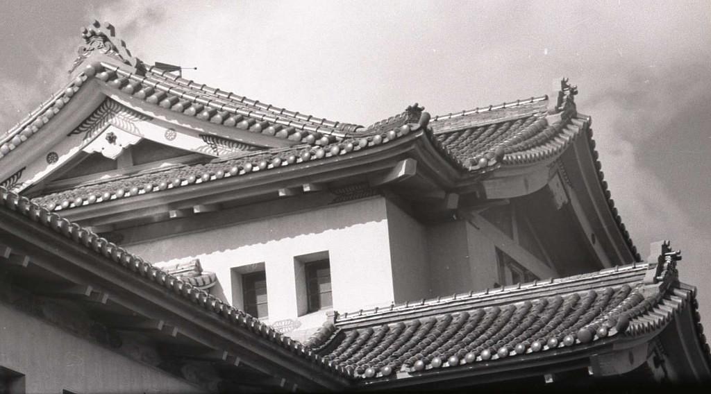 Крыша Сахалинского краеведческого музея