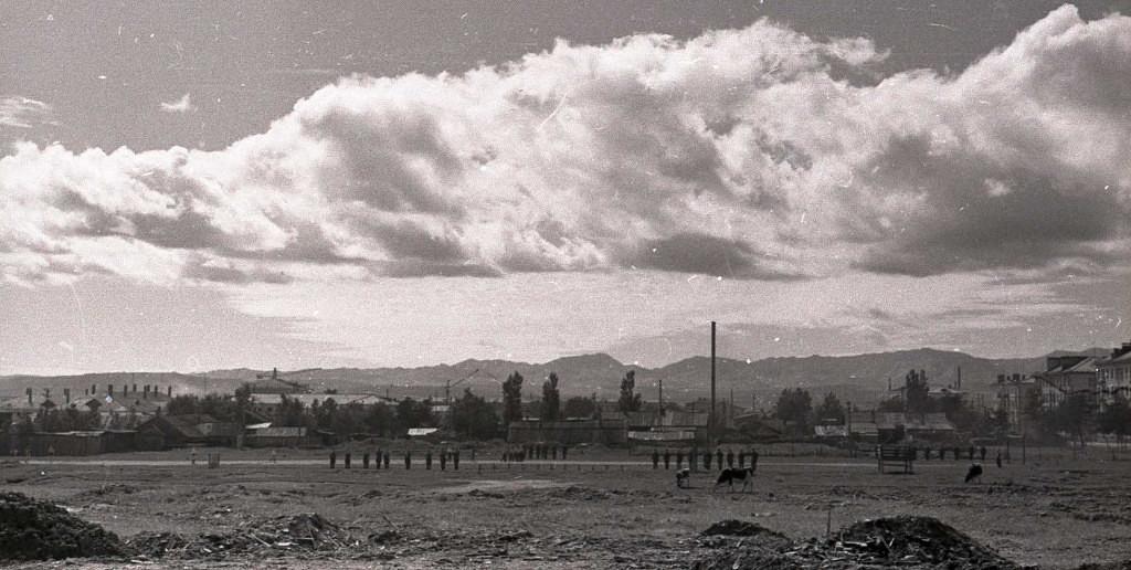 Вид из холла Дома радио. Пустырь и полоса препятствий  и строевой плац для солдат из соседней части, и выпас для телят.
