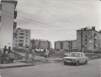 Часть ул. им. В.И. Ленина. Слева на первом плане - торцовая стена дома № 20, автобусная остановка, изображены пожилые женщины и мужчина, сидящие на скамейке, двое мужчин стоят позади скамьи (скамейка - на деревянных мостках), рядом - три женщины. Справа - жилой дом с аптекой. По автомобильной дороге движется автомобиль. На втором плане слева - общежитие ЦБЗ. На заднем плане, - дома по ул. им. М. Фрунзе.