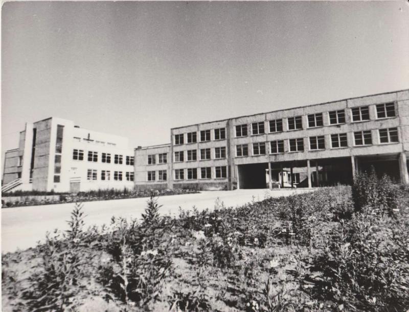 Средняя школа №7 г. Поронайска. Вид на школу со стороны улицы Ленина. На переднем плане - часть школьного двора, трава. на заднем плане - корпуса школы.
