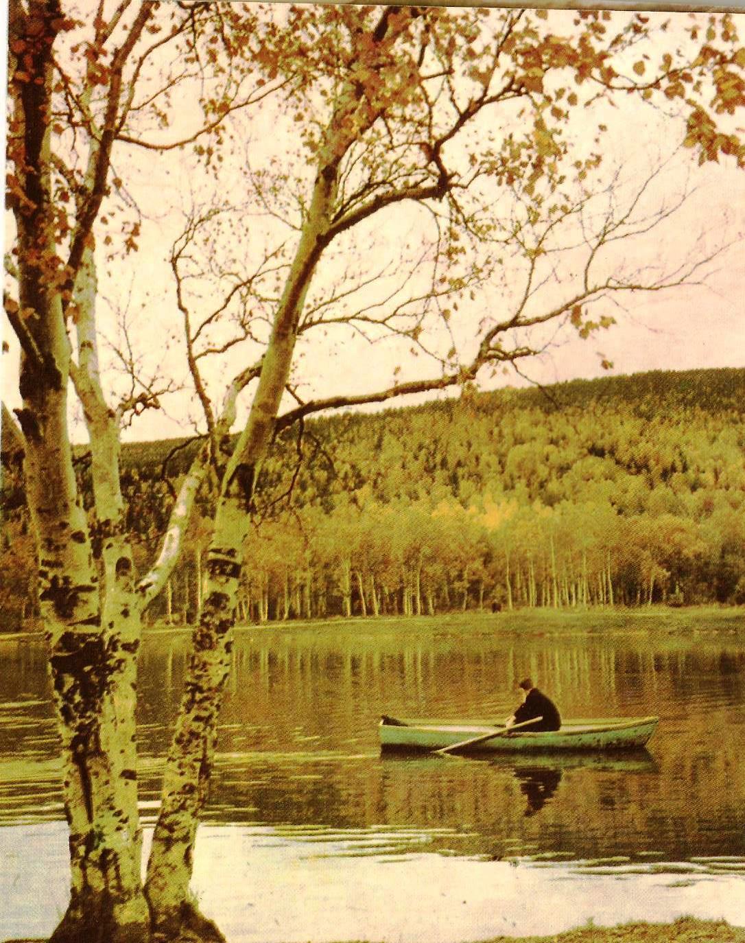 Озеро Верхнее в городском парке в Южно-Сахалинске