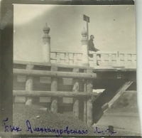 Белый мост 'Бык Александровского моста'