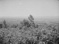 Серия снимков. 1 из 3. Вид на город Тоехара