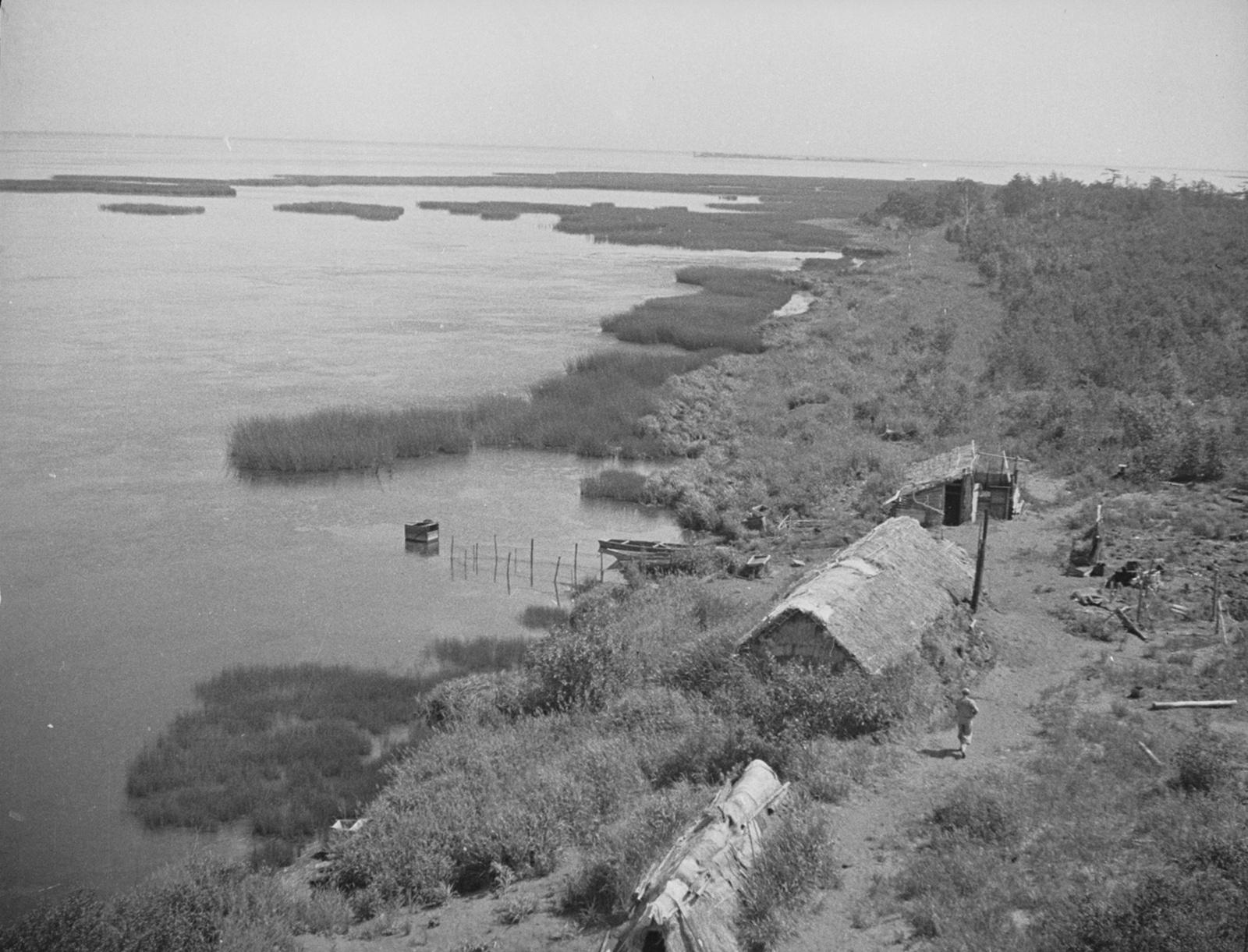 Серия снимков. На озере Тарайка